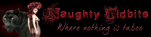 naughty-tidbits